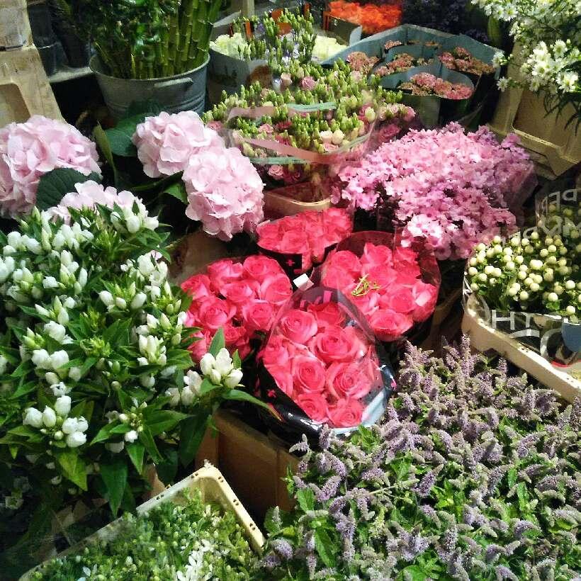 fleurs fraîches du jour