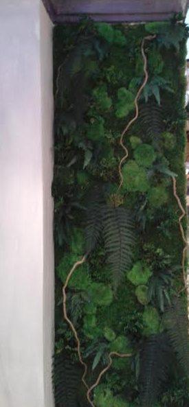 réalisation mur végétal